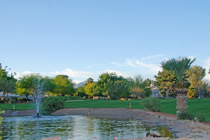 View of a pond at Los Prados Golf Course